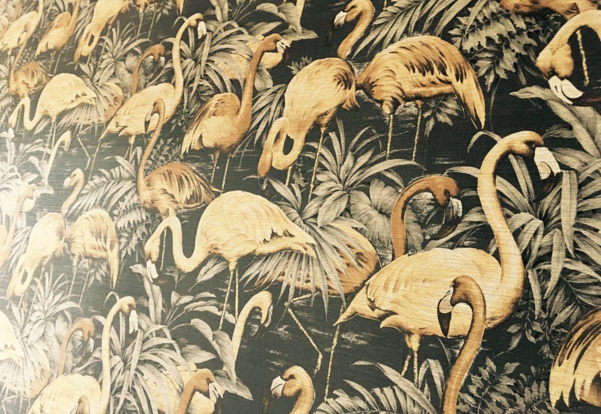 Flamingos im restaurant friedrich